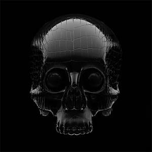 ARTJAWS_LUXEREAU-blackcrocodile